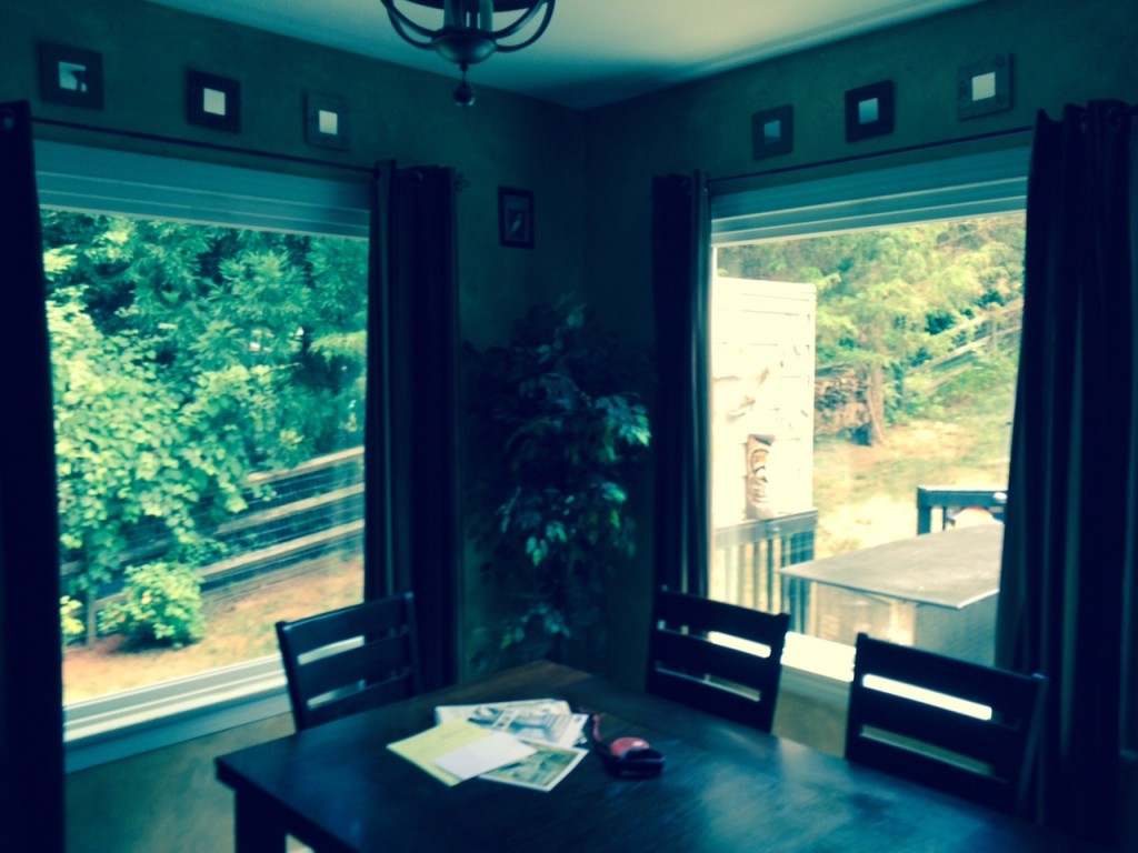 Huntersville, NC, after new window replacement.